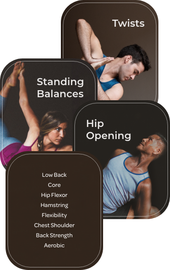 Boost with Core Strength, Aerobics, Hip Opening, as well as our other boosts, Low Back, Core, Hip Flexor, Hamstring, Flexibility, Chest Shoulder, and Back Strength.